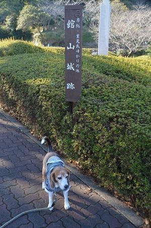 20171125館山城址01