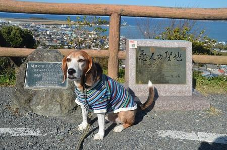 20171125房総半島(館山市)からの富士03