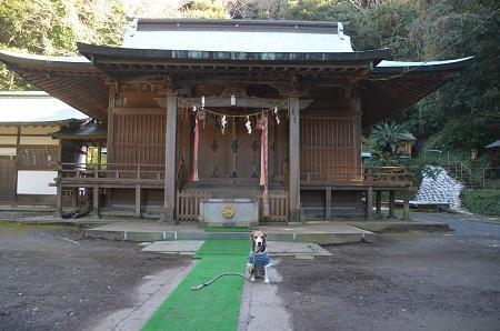 20171125洲崎神社18