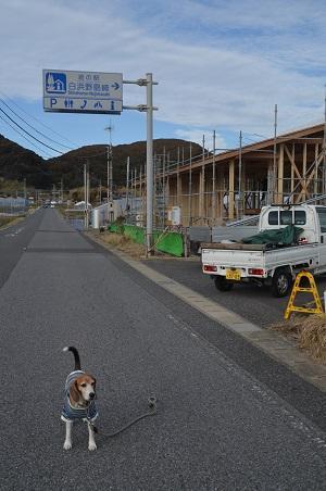 20171125道の駅白浜野島崎02