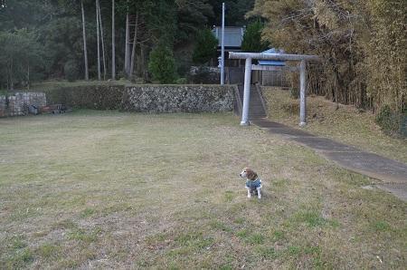 20171125畑小学校06