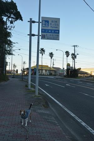 0171125道の駅きょなん02