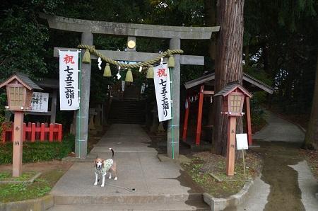 20171201麻賀多神社02