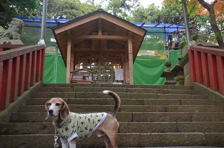 20171201麻賀多神社11