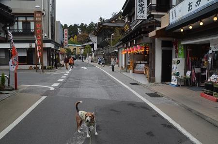 20171201成田山新勝寺01