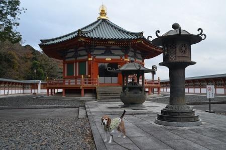20171201成田山新勝寺24