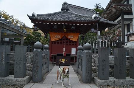 20171201成田山新勝寺30