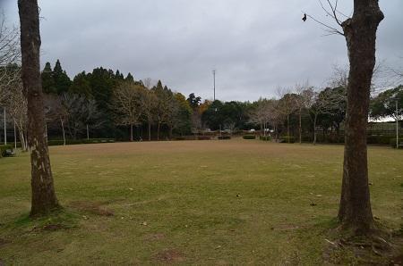 20171201丸山公園06