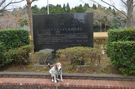 20171201丸山公園05