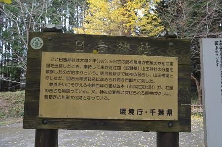 20171201日吉神社05