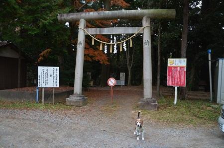 20171201日吉神社03