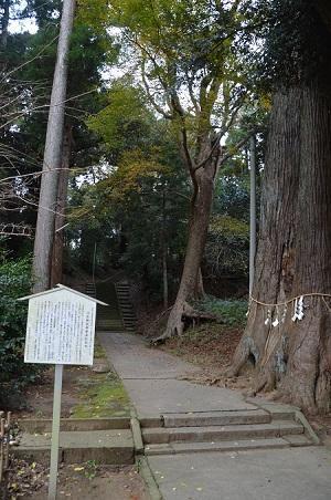 20171201日吉神社10