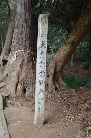 20171201日吉神社09
