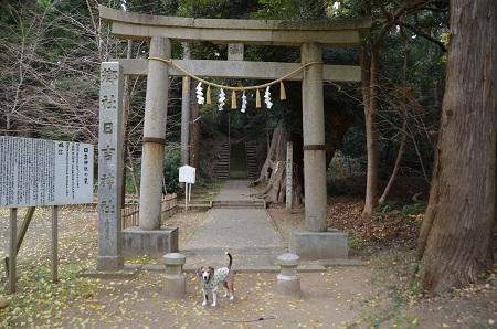 20171201日吉神社08
