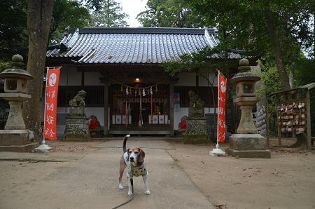 20171201日吉神社21