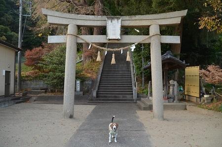 20171201田間神社04