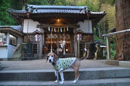 20171201田間神社11