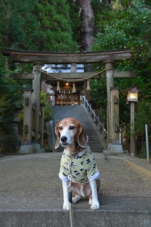 20171201田間神社09