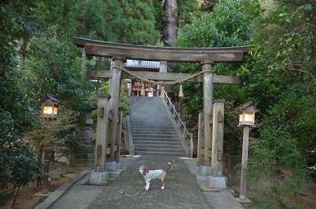 20171201田間神社10
