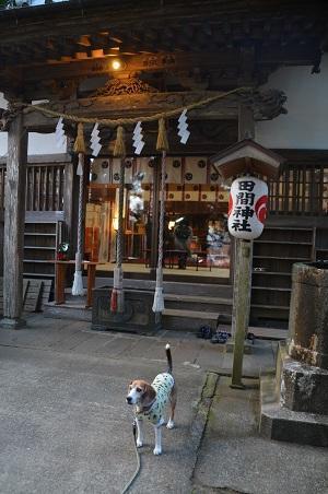 20171201田間神社17