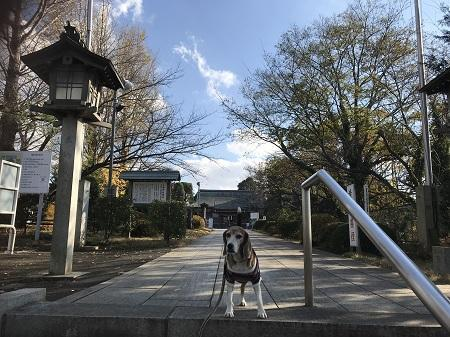 20171207千勝神社06