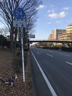 20171207日本の道百選06