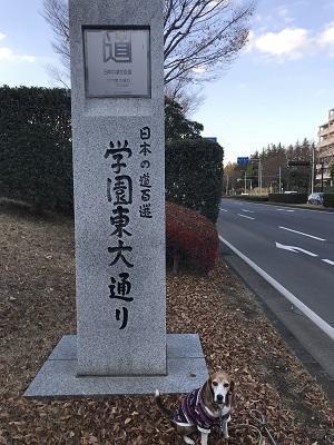 20171207日本の道百選09