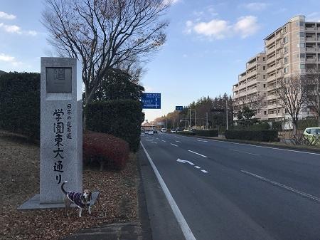 20171207日本の道百選08