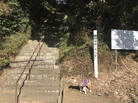 20171207蛟蝄神社08