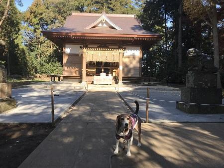 20171207蛟蝄神社15