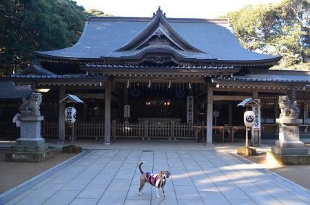 20171209猿田神社08