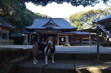20171209猿田神社07