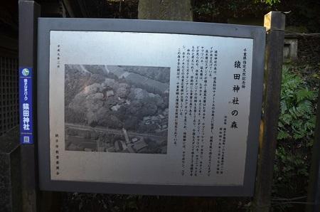 20171209猿田神社15
