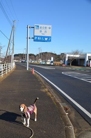 20171209道の駅 多古01