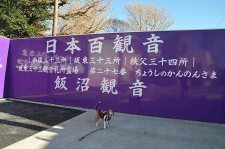 20171209飯沼観音01