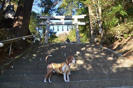 20171214高瀧神社09