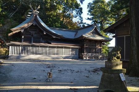 20171214高瀧神社20