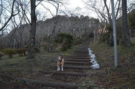 20171214鶴舞公園06