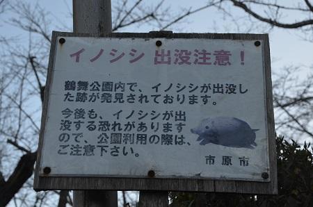 20171214鶴舞公園05