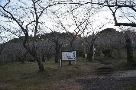 20171214鶴舞公園03