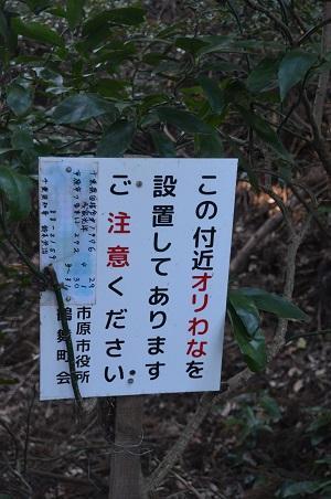 20171214鶴舞公園17