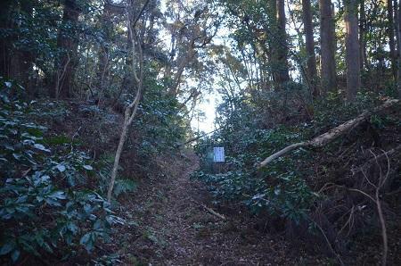 20171214鶴舞公園16