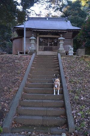 20171214鶴舞公園23