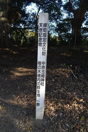 201710214 いずみ玉崎神社21
