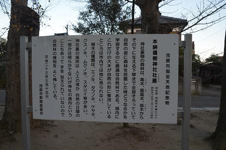 20171214橘樹神社05