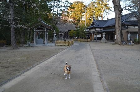 20171214橘樹神社07