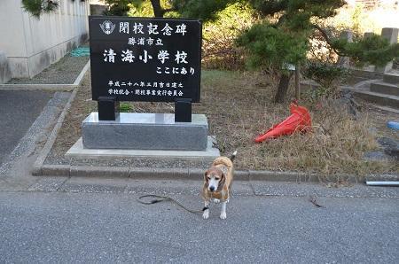 20171214清海小学校05