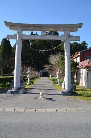 20171214春日神社01