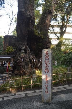 20171218来宮神社25