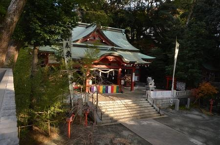 20171218来宮神社37